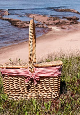 Picnic basket on green grass with a red checkered ground cloth around the edges next to the ocean.
